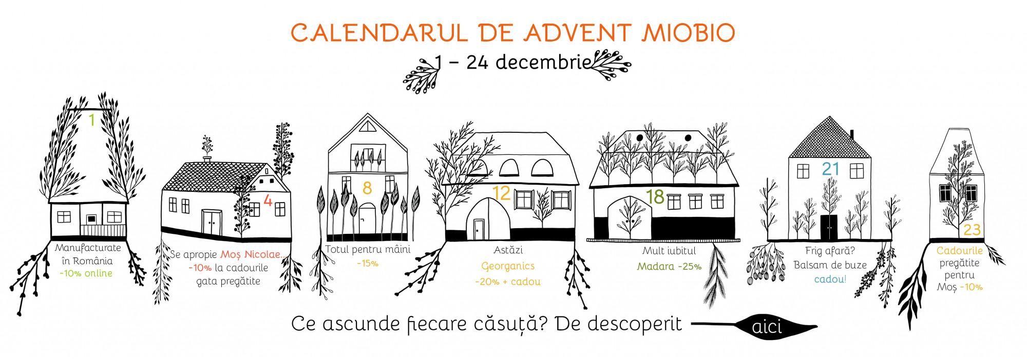 Calendar Advent 2020