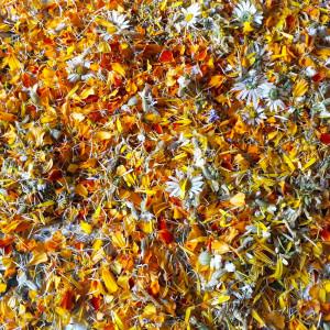 Hârtie plantabilă – hârtie manuală cu semințe de flori sălbatice și lavandă