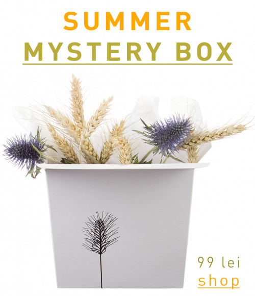 Summer Mystery Box