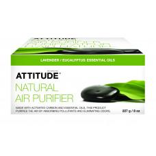 Purificator natural de aer - lavandă & eucalipt