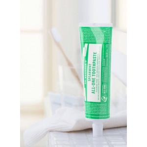 Pastă de dinți SPEARMINT