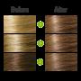 6.0 Blond inchis auriu aramiu - Vopsea naturala de par