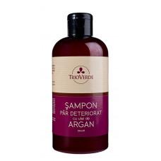 Şampon pentru păr deteriorat - cu ulei de argan